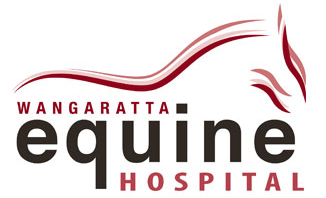 Equine Veterinary Hospital
